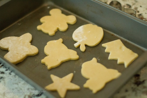 cookies 7 (700 of 1)