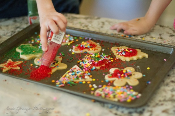 cookies (700 of 1)